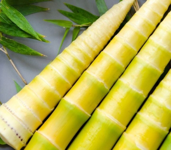 5 bamboo canes